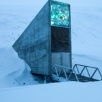 Инфраструктура Арктики